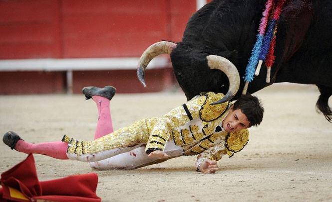mad-bull-goring