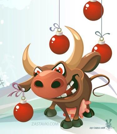 christmas-bull