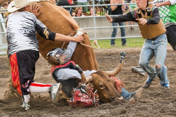 Dana-Balaski-rides-a-bull